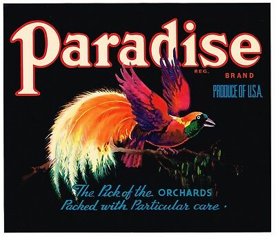 Apple Crate Box Label Bird Of Paradise Brand Vintage California 1930S Original