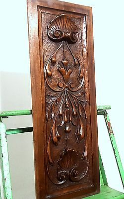 Carved Wood Panel Antique French Shell Carving Architectural Salvage Panelling