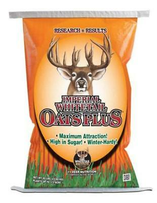 """Whitetail Institute Oats - 20 Lbs. """"Bulk Seed"""""""