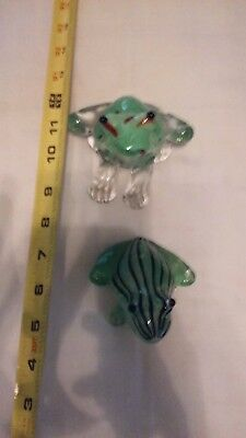 Set of two Glass Frogs