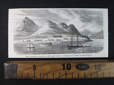 1864 Nuova Caledonia Stabilimento Inglese Paddon Antica Stampa Engraving D396