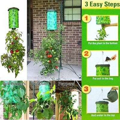 Upside Down Hanging Planter System Tomatoes Vegetable Home Garden Cantainer Pot