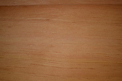 Western Red Cedar Raw Wood Veneer Sheets 4.25 x 24 inches 1/42nd thick   4518-29