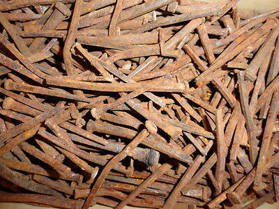 """Lot of 100 Steampunk Vintage Primitive Square Barn Nails 2""""- 4"""" Assorted Sizes"""