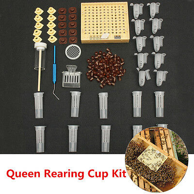 155pcs Queen Rearing System Cultivating Box Bee Catcher Cage Beekeeping Tool Kit