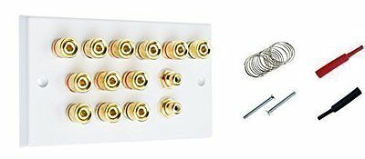 6.2 Surround Sound Speaker Wall Plate with Gold Binding Posts + RCA Socket + +