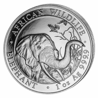 2018 Elephant 1 oz Silver Coin | Direct From Somalian Mint Tube