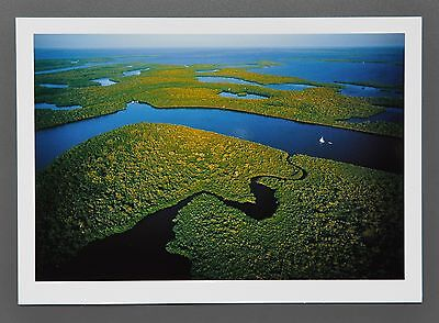 Yann Arthus-Bertrand Photo 17x24 Mangroven Everglades National Park Florida USA