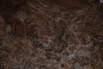 Walnut Burl Raw Wood Veneer Sheet 9 x 14 inches 1/42nd thick         7369.23