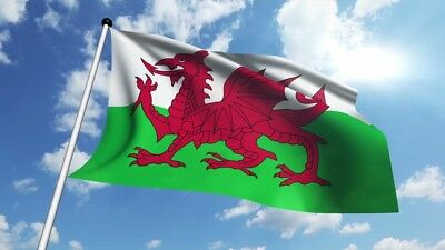 8x5ft WALES FLAG Welsh Red Dragon Cymru RUGBY 6 Nations - Funeral Coffin Drape
