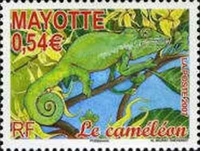 Timbre Reptiles Mayotte 204 ** année 2007 lot 22483
