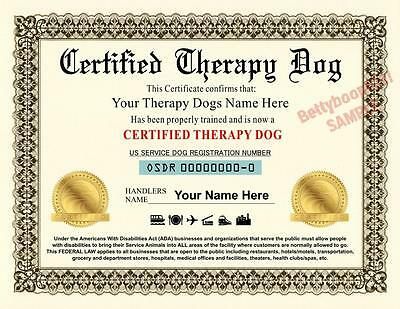 THERAPY SERVICE DOG Certificate (8.5 by 11 inches) ADA - PET Custom USA