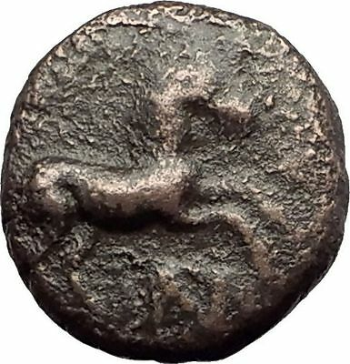 MARONEIA Thrace 400BC Authentic Ancient Greek Coin w HORSE & WINE GRAPES i62377