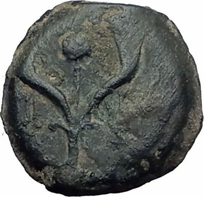 Jewish King ALEXANDER JANNAEUS Ancient Jerusalem WIDOW's MITE Bible Coin i64167