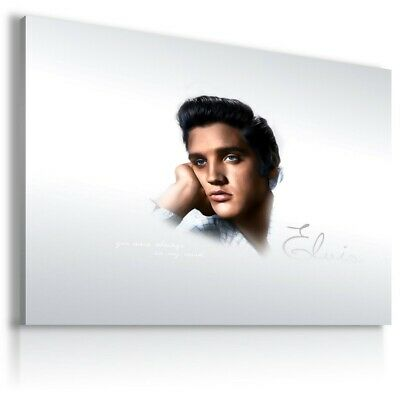 ELVIS PRESLEY  The King Of Rock /& Roll   Canvas Wall Art Picture  EP54 MATAGA