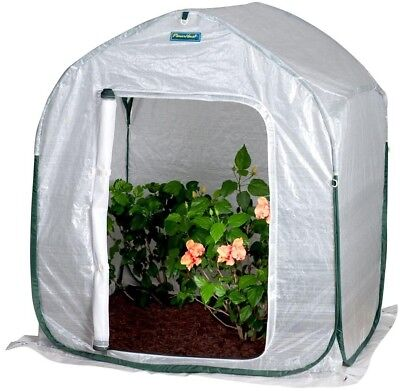 Greenhouse PlantHouse 4 ft. Square Pop Up UV Protected Single Door Open Floor