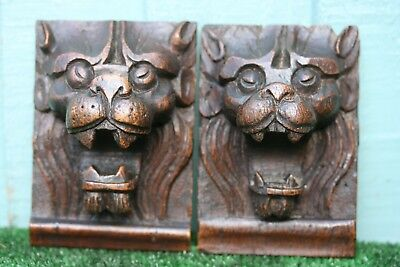 SUPERB PAIR: 18thC GOTHIC WOODEN OAK CORBELS WITH INTRICATE LION HEADS c1780s