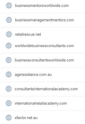 Choice of 9 exclusive domain names for business, beauty or talent consultants