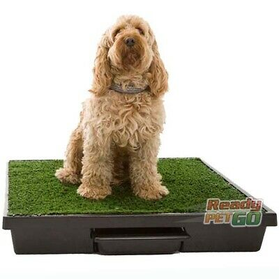 The Pet Loo Indoor / Outdoor Pet Toilet - Original Large Size For Dogs Or Cats