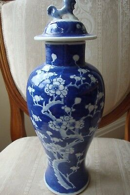 Chinese Blue & White Vase Prunus 19c Circa 1870