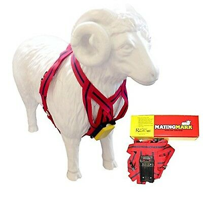 MATINGMARK Deluxe Ram Marking Harness for Monitoring Breeding Sheep & Goats b...