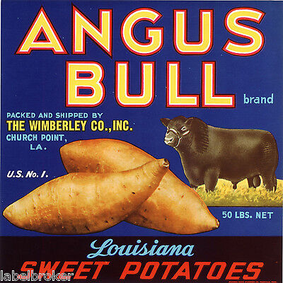25X Wholesale Lot Nos Yam Crate Label Angus Bull Church Point Louisiana C1950