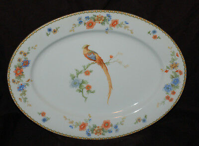 "MZ Altrohlau 9-1/2"" x 13"" Platter Goden Pheasant  Combined Shipping Available"