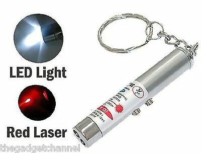 2 In 1 Laser Pointer Torch Gadget Novelty Boys Toy Mens Womens Weird Gift