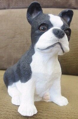 USA Seated Boston Terrier Puppy Dog Coin Bank Figurine