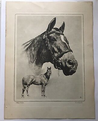 Man o' War Dry point R.H. Pelenske W/ Over Lay