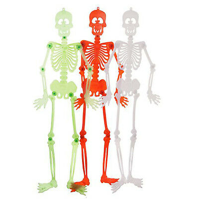 Halloween Jointed Skeleton Assorted (90cm) Medical Medium Skull Anatomical Model