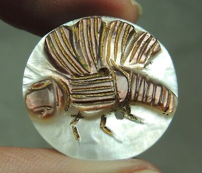 Carved Mop Pearl Shell Button ~ Butterfly