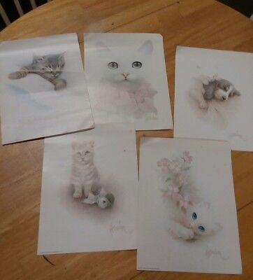 Bob Harrison 5 kitten prints
