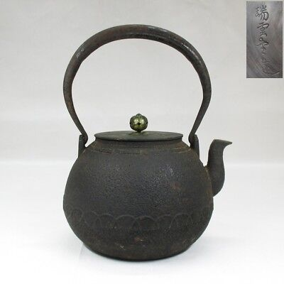 H062: Japanese old iron kettle TETSUBIN with good relief by famous ZUIUN-DO.