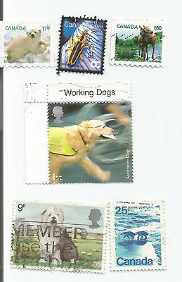 ANIMALS; lot of 6 world stamps Used s*