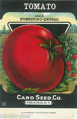Vintage Seed Packet Advertising General Store Garden Lithograph Tomato Pomedoro