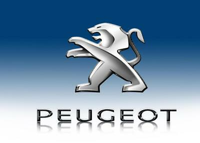 Blue Peugeot Car Banner Flag 3X5ft Racing Sign Advertising Wall Garage Hanging