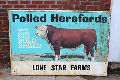 """Polled Herefords Sign The Big Bold Breed Lone Star Farms 46 X 70"""" Very Rare! (B)"""
