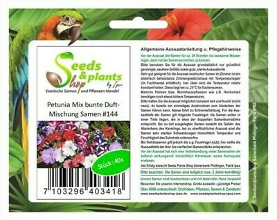 40x Petunia Mix Colourful Scent Mixture - Flower - Seeds #144