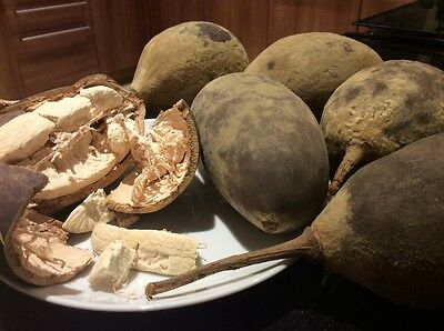 Fresh Baobab Fruit approx1kg total not powder UK Seller Ships from London!