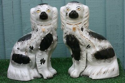 SUPERB PAIR: MID 19thC STAFFORDSHIRE BLACK & WHITE SEATED SPANIEL DOGS c1860s