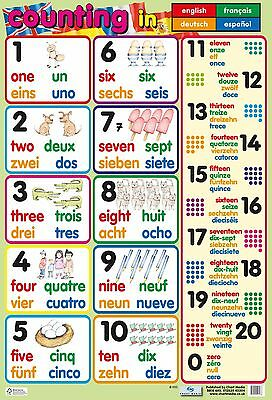 Count in 4 Languages Poster / educational / learning / literacy