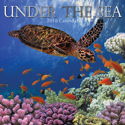 Under The Sea ~ 16 Month  2018 Square Wall Calendar