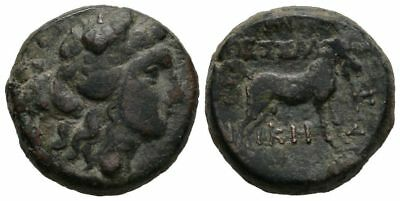 Ancient Greece  187-131 BC MACEDON THESSALONICA DIONYSOS GOAT AE