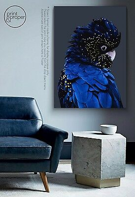BLACK COCKATOO - Art Print Poster Canvas - On Trend