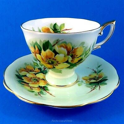 Pretty Yellow Wild Rose on Light Green Royal Standard Tea Cup and Saucer Set
