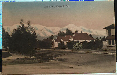 UPLAND, CALIFORNIA, Hand Colored Post Card 1905-15 San Bernardino County, STREET