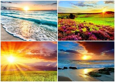 4 - Sunrise / Sunsets 5 x 7 / 5x7 GLOSSY Photo Picture LOT