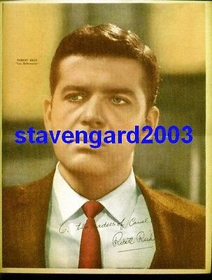 ROBERT REED The Defenders SIGNED POSTER Argentina 1960's
