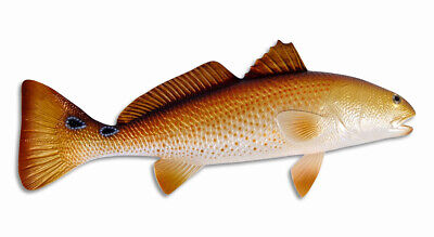 "Hand Painted 28"" Redfish Red Drum Fish Wall Mount Decor Sculpture 75R"